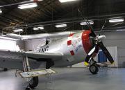 Peterson Hangar-P47N